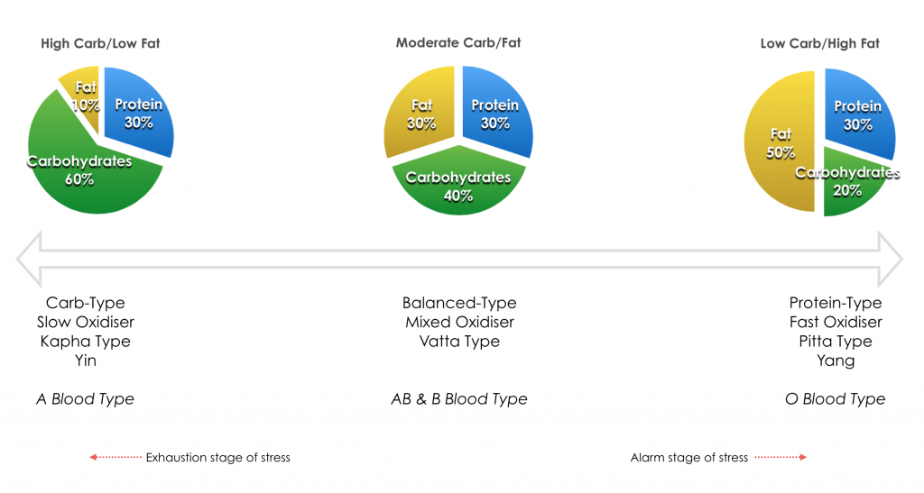 Nutrition Foundations Clinical Model